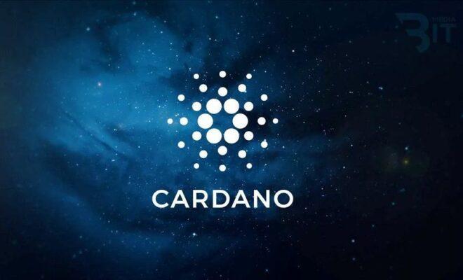 Strait Brands будет отслеживать алкогольную продукцию с помощью блокчейна Cardano_61573a2229ecf.jpeg